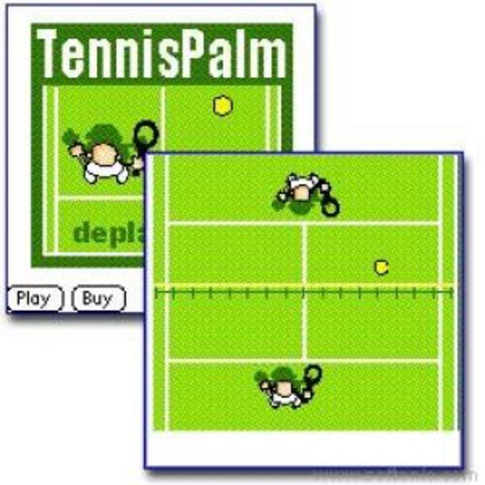 Tennis Palm