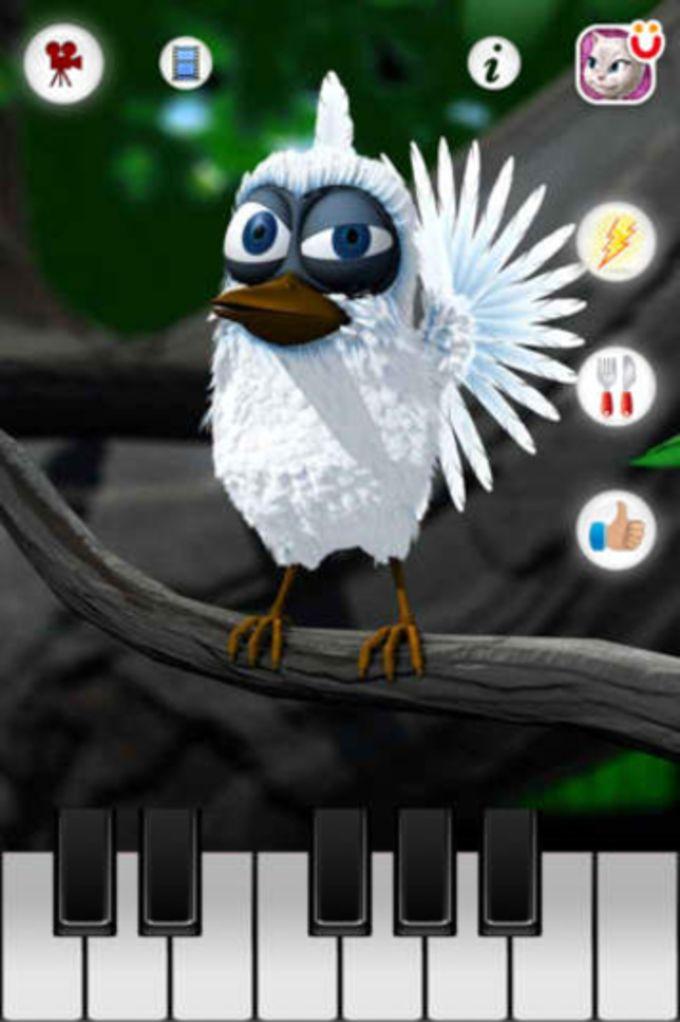 Sprechender Vogel Larry