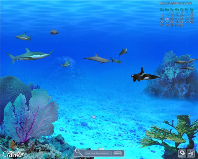 3D Marine Aquarium Screensaver