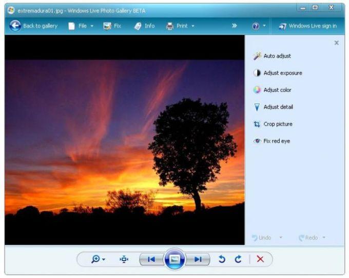 Galería Fotográfica de Windows Live 2012