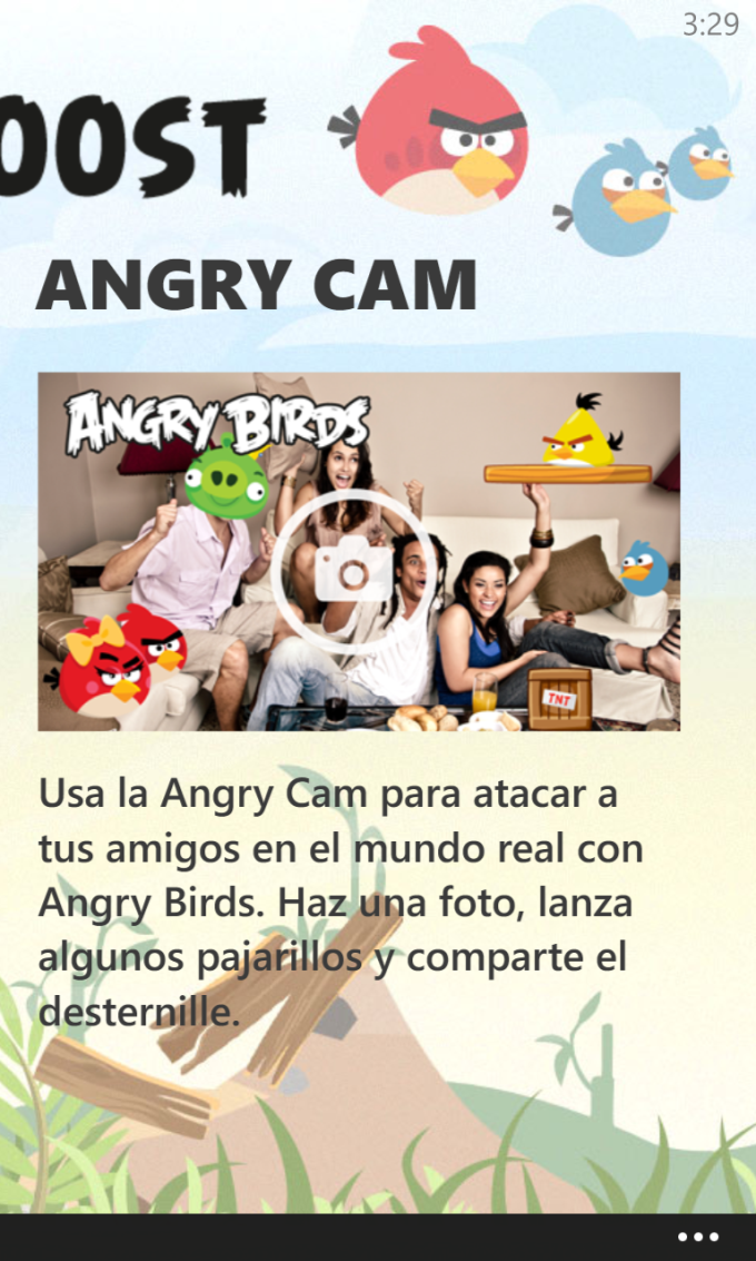 Angry Birds Roost