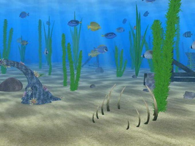 Water Life 3D Screensaver
