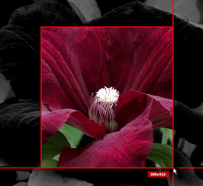 SPX Instant Screen Capture