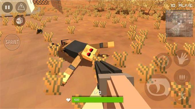Battle Royale Battlegrounds Craft 3D