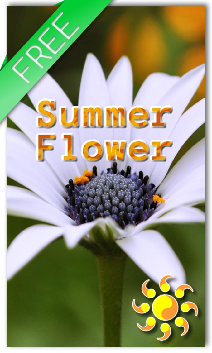 Summer Flower LWP