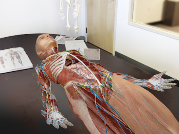Human Anatomy Atlas 2018 Complete 3d Human Body For Android Download