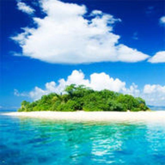 Tema Paradise by Pizero