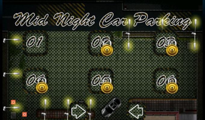 Car Parking Midnight version.