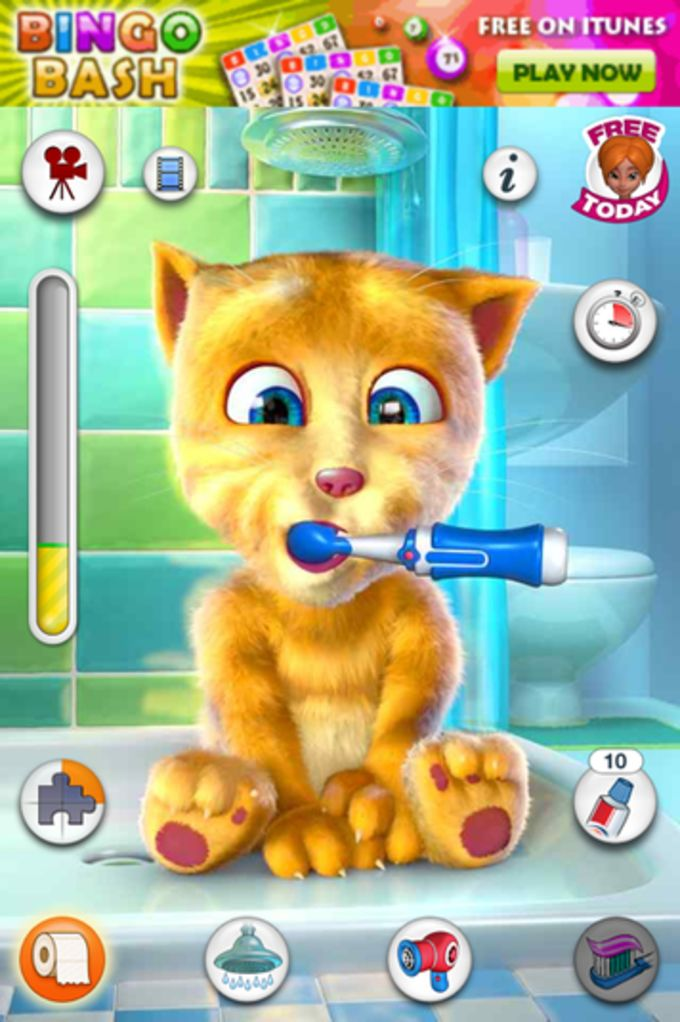 Talking Ginger for iPad