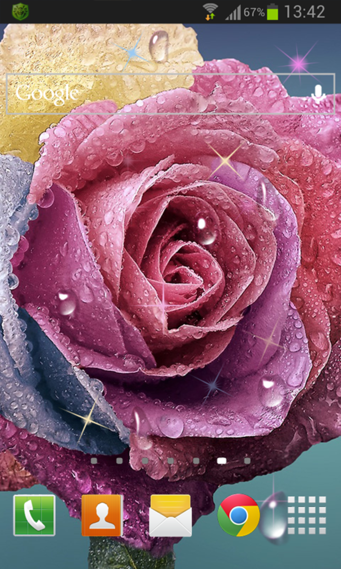 Raindrops Rose Live HD