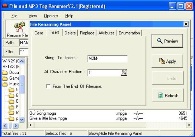 File And MP3 Tag Renamer