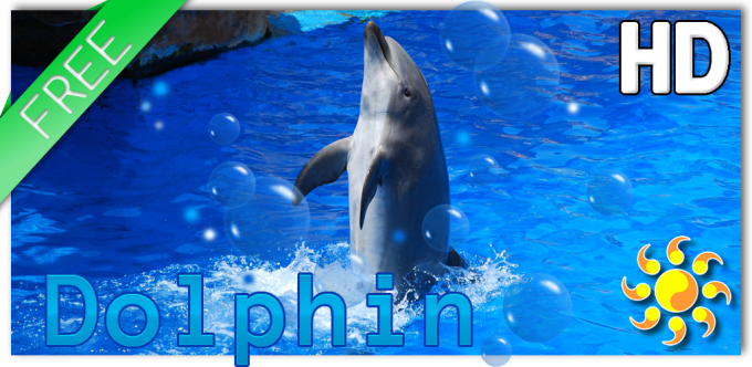 Animal Dolphin Live Wallpaper