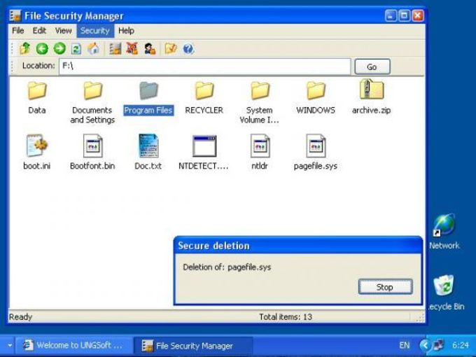 File Security Manager