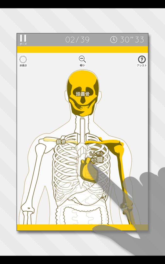 Enjoy Learning Anatomy puzzle