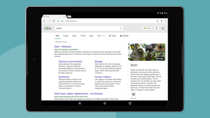 Ecosia Browser - Fast  Green