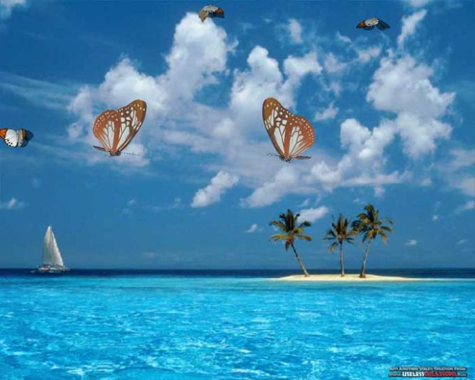 3D Desktop Butterflies Screen Saver