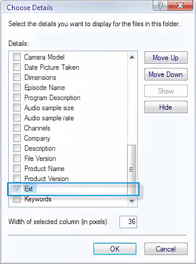 Explorer filename extension column
