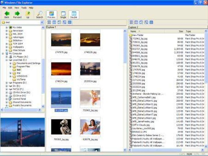 Windows File Explorer