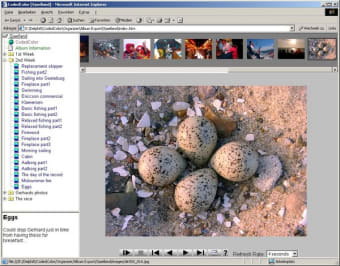 CodedColor PhotoStudio