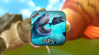 feed and grow fish - New Guide
