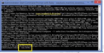 Wayback Machine Downloader