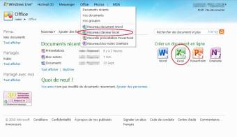 Microsoft Excel Web App