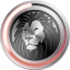 Lion Designer