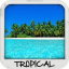Tropical Wallpapers