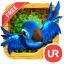 UR 3D Aves de la Jungla HD