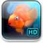 iQuarium HD