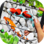 Fish Live wallpaper 2019: 3D Aquarium Koi Pond