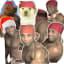 Ricardo Milos Stikers Momazos WAStickerApp memes