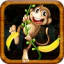 Jungle Monkey Rush : Eat Bananas