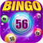 Bingo Happy  Casino  Board Bingo Games Free  Fun