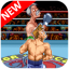 SNES PunchOut  New Classic Boxing Game