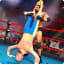 Wrestling Nitro Revolution  Wrestling Games 2K18