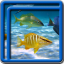 Ocean Fish Live Wallpapers