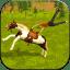 Horse Simulator