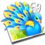 Aviary Peacock