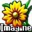 Imagine Portable