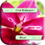 Flowers for Whatsapp Wallpaper 4K
