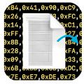 BinaryToSourceCode