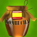 KOMBUCHA - ES