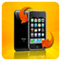 Domino iPhone Video Converter