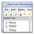 Flashnote Portable