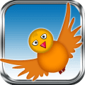 Fly Birdie - Bird Flyer