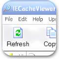 IECacheViewer