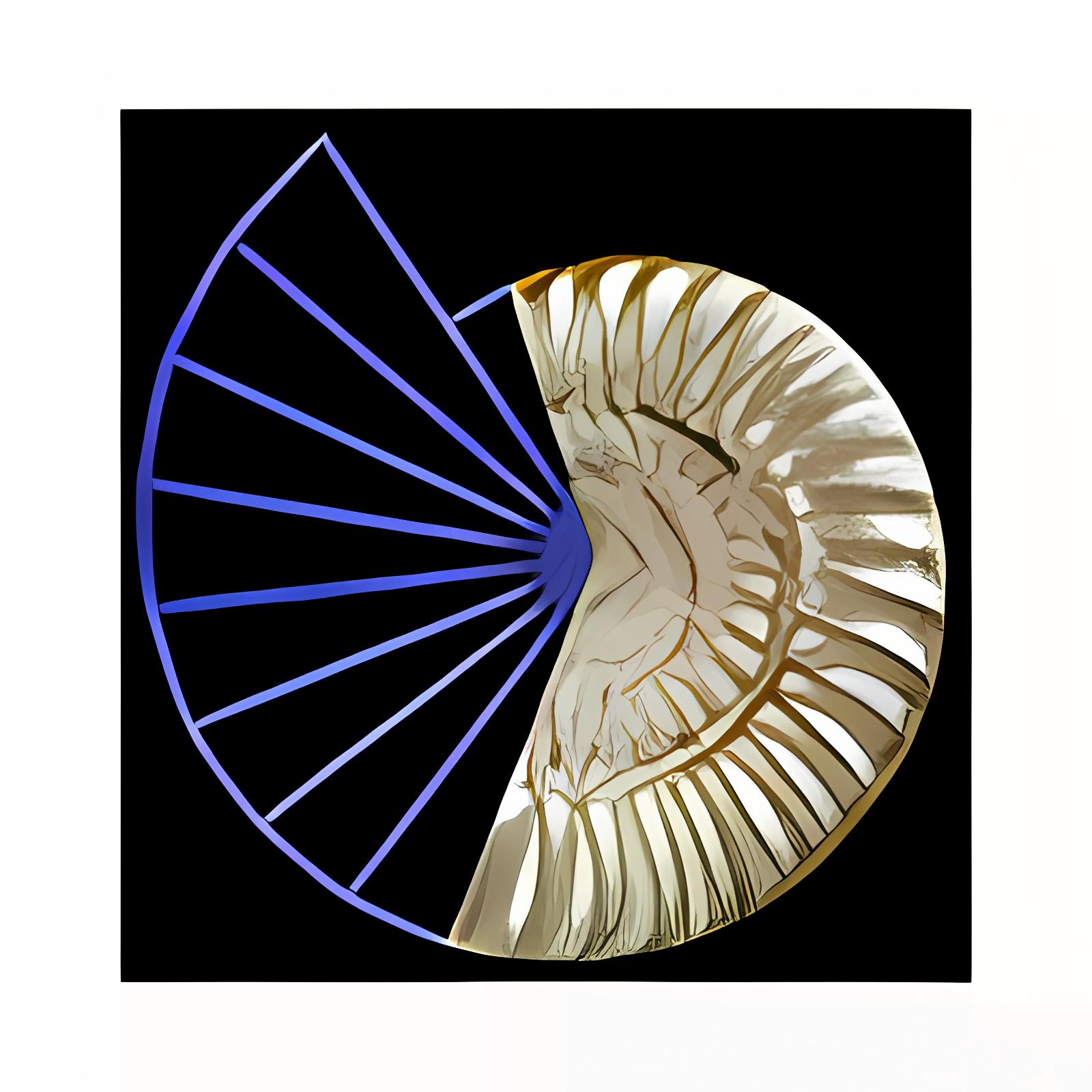 Zirkel und Lineal