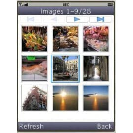Picasa photo browser