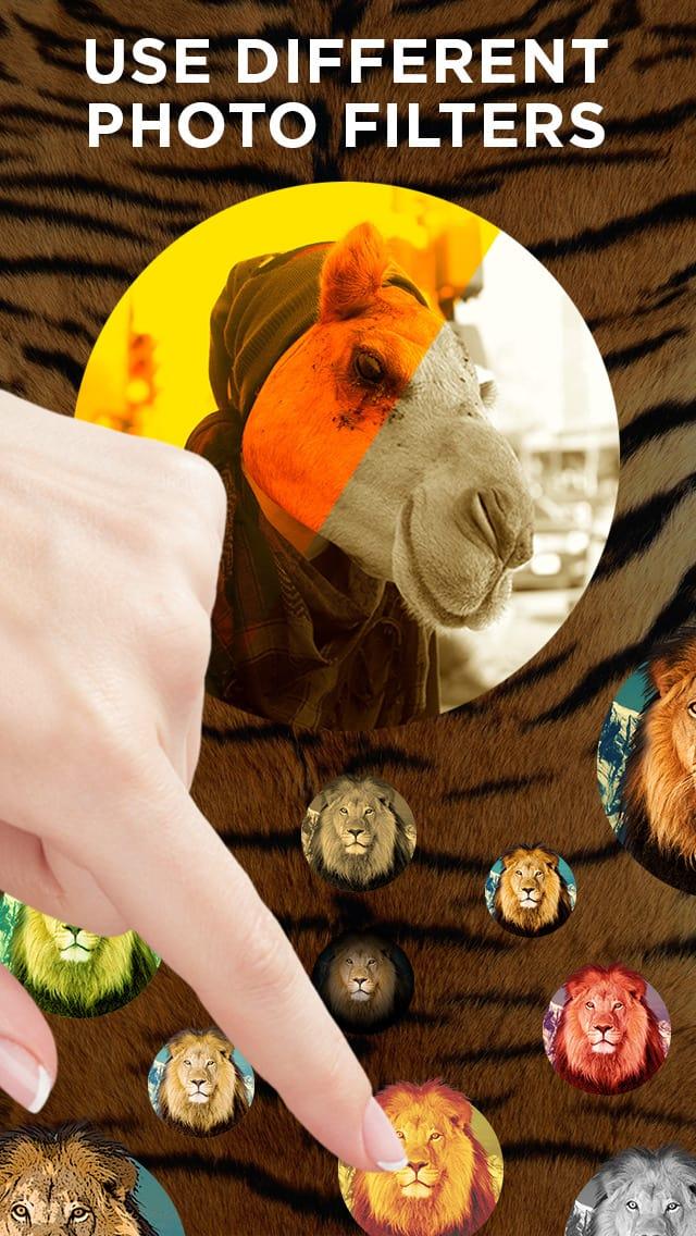 Bestia cabeza- editor de fotos con pegatinas de la cara de los animales